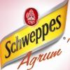 visuel de Schweppes Agrum'